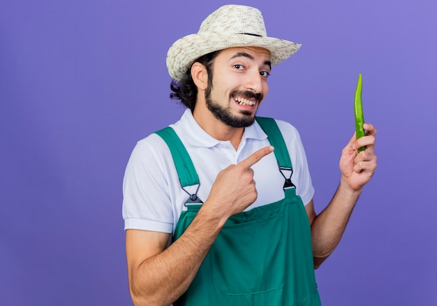 Giovane giardiniere barbuto uomo che indossa tuta e cappello che mostra il peperoncino verde che punta con il dito indice a sorridere in piedi sopra la parete blu