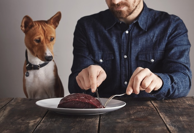 Young bearded man cuts small piece of big raw luxiry whale meat steak to share with his beautiful african dog. dog is watching carefully.