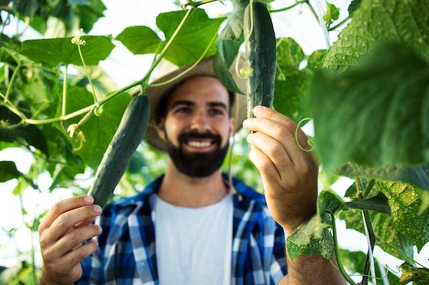 温室で野菜を育ててチェックしている若いひげを生やした男の農夫