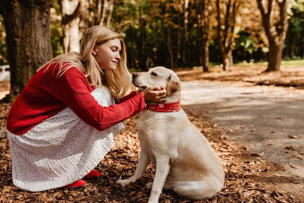 公園で優しく彼女の白いラブラドールを保持している素敵な赤いセーターの若い美しいブロンド。秋のペットと楽しい時間を過ごしている流行のドレスのかわいい女の子。