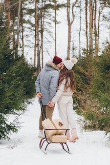 若い美しいカップルは、冬の針葉樹林で抱擁とキスをし、そりに贈り物の入った箱を運びます。背景にクリスマスツリーがある公園。クリスマス気分。着色。