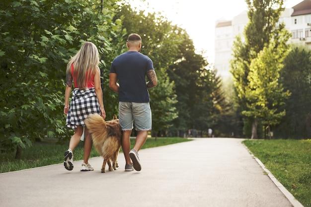 Молодая красивая пара гуляет с собакой в летнем парке