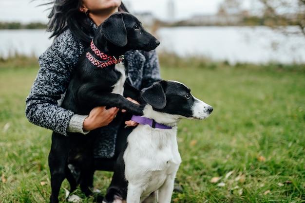 Молодая красивая девушка гуляет с собакой. милая женщина, играя с щенками, открытый на природе. владелец с милыми маленькими клыками с жалкими глазами.