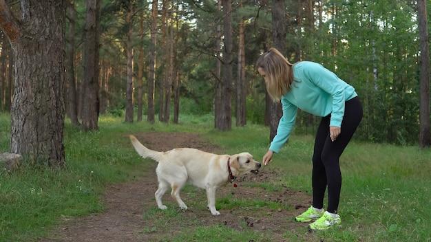 Молодая красивая девушка женщина играет со своей веселой собакой лабрадора во время отдыха на природе
