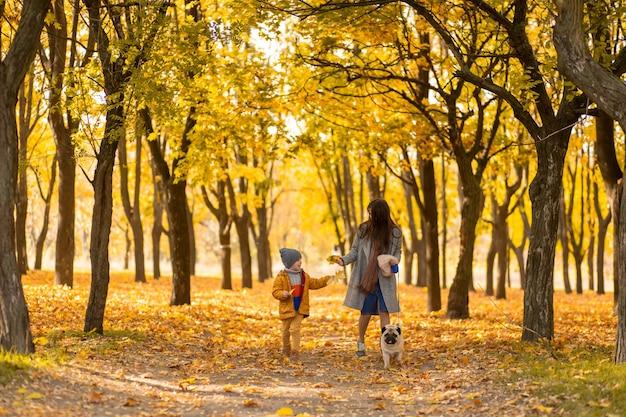 Молодая красивая мама проводит время на прогулке с любимым сыном в осеннем парке. счастливая семья наслаждается осенними днями.
