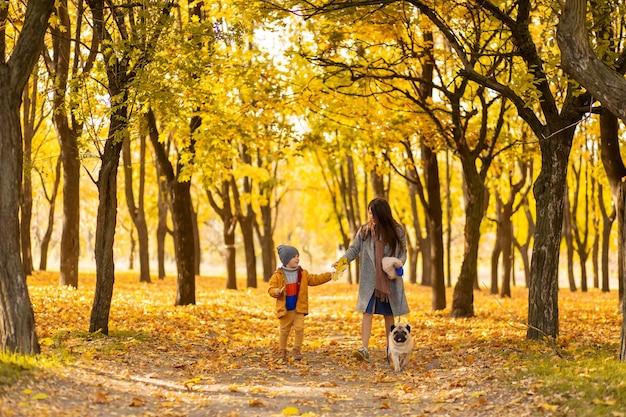 Молодая красивая мама проводит время на прогулке с любимым сыном в осеннем парке. счастливая семья наслаждается осенними днями
