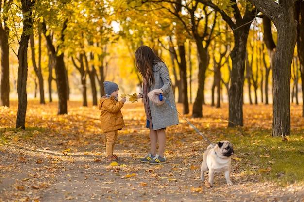 若い美しい母親は、秋の公園で彼女の最愛の幼い息子と散歩に時間を費やしています。幸せな家族は秋の日をお楽しみください