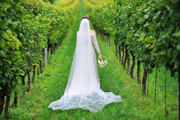 若い美しい結婚式の花嫁は、美しいドレスを着てブドウ園の近くのイタリアのトスカーナで日没時に歩きます。イタリアトスカーナの夏のブドウ園。