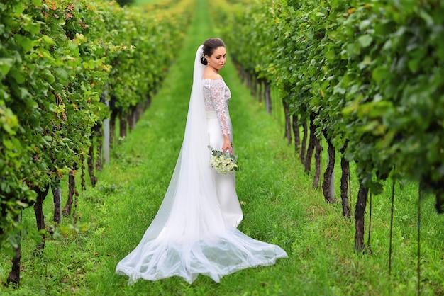 젊은 아름 다운 결혼식 신부는 아름 다운 드레스에 포도 원 근처 이탈리아에서 토스카나에서 석양 산책.