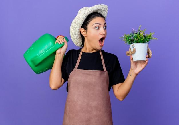 じょうろと鉢植えの植物を保持しているエプロンと帽子の若い美しい女性の庭師は、青い壁の上に立って驚いて驚いています