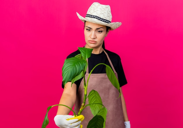 ピンクの壁の上に立って混乱しているそれを見ているゴム手袋エプロンと帽子保持植物の若い美しい女性の庭師