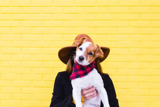 Young beautiful woman holding and loving her dog. yellow brick wall. love and pets outdoors