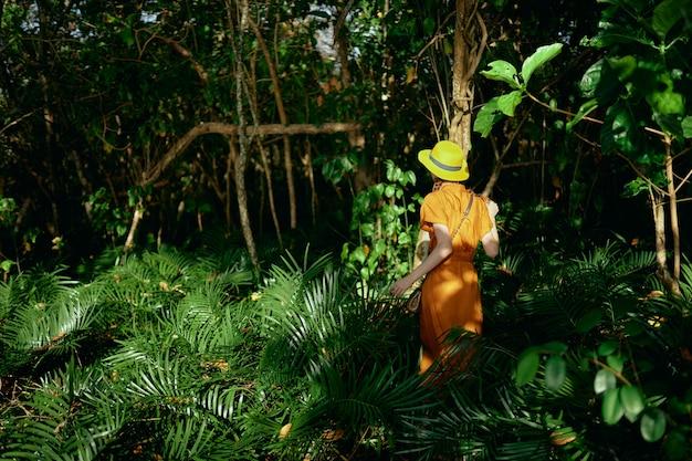 Молодая красивая женщина в тропиках джунглей с шляпой гуляет в парке, натуралист