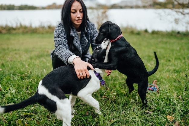 Young beautiful woman playing with puppies at nature.