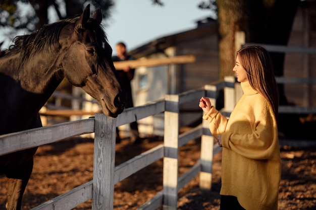 Young beautiful woman in a yellow sweater near the horses in the autumn park on a sunny day