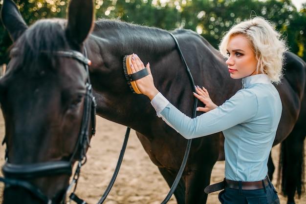 Молодая блондинка ухаживает за волосами коричневой лошади. конный спорт, привлекательная дама и красивый жеребец
