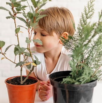 Young boy looking at two pots with plants