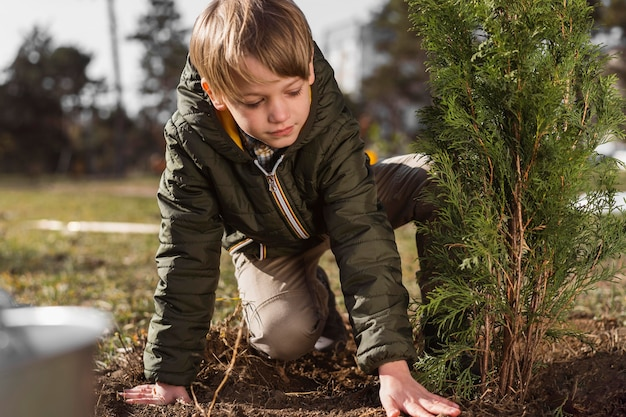Young boy planting a tree outdoors