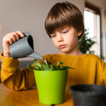 Young boy watering plant in pot