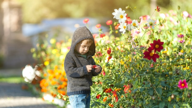 Young boy with hoodie holding a flower