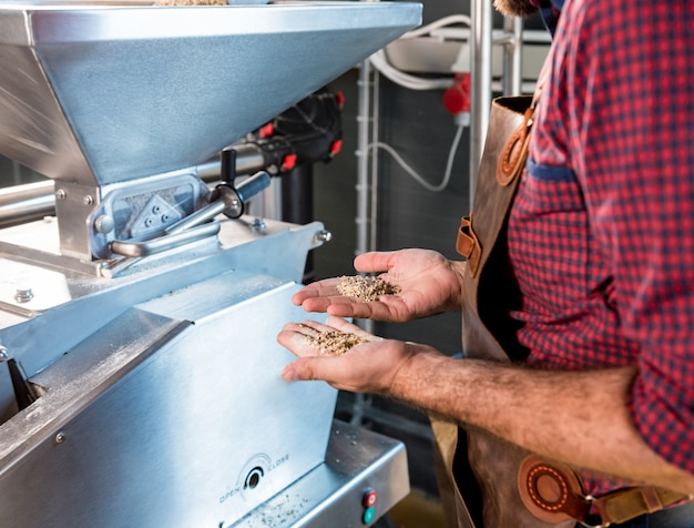 A young brewer in a leather apron controls the grinding of malt seeds in a mill at a modern brewery