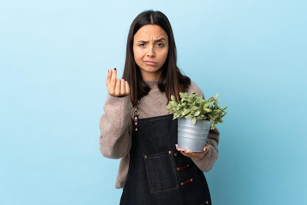 이탈리아 제스처를 만드는 격리 된 파란색 이상 식물을 들고 젊은 갈색 머리 혼혈 여자.