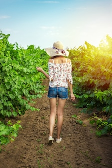 An young brunette woman in white dress running walking between a vineyard rows and touching the plants