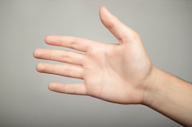 カメラの前で若い白人少年の手のひら