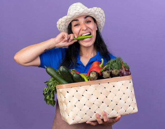 紫色の背景で隔離のコショウを噛むカメラを見て野菜のバスケットを保持している制服と帽子を身に着けている若い白人の庭師の女の子