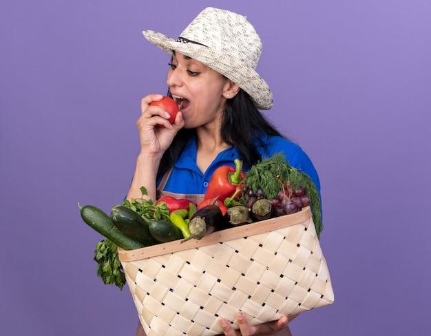 Giovane giardiniere caucasica ragazza che indossa l'uniforme e cappello che tiene cesto di verdure e si prepara a mordere il pomodoro guardando in basso isolato sulla parete viola