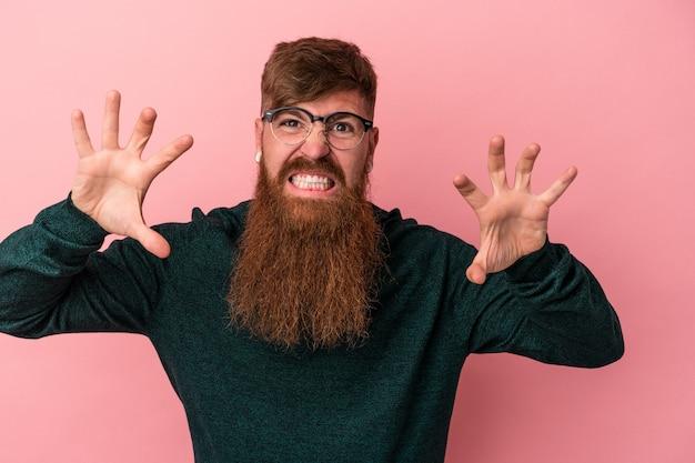 Молодой кавказский рыжий мужчина с длинной бородой на розовом фоне показывает когти, имитирующие кошку, агрессивный жест.
