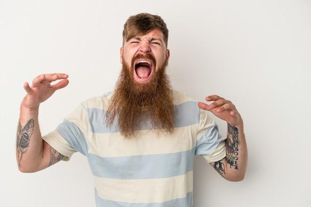 空に向かって叫び、見上げて、欲求不満の白い背景に分離された長いひげを持つ若い白人生姜男。