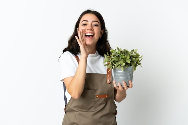 口を大きく開いて叫んで白い背景で隔離の植物を保持している若い白人女性