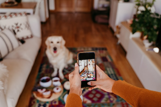 Young caucasian woman taking a picture of her golden retriever dog with mobile phone