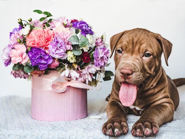 젊고 매력적인 강아지와 꽃의 꽃다발