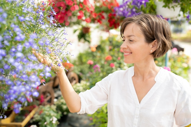 Young cheerful florist looking at bunch of blue tiny flowers in garden center while taking walk among blooming flowerbeds