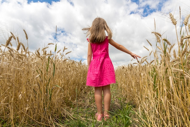 Young child girl in red dress with long hair standing in wheat field. rear view