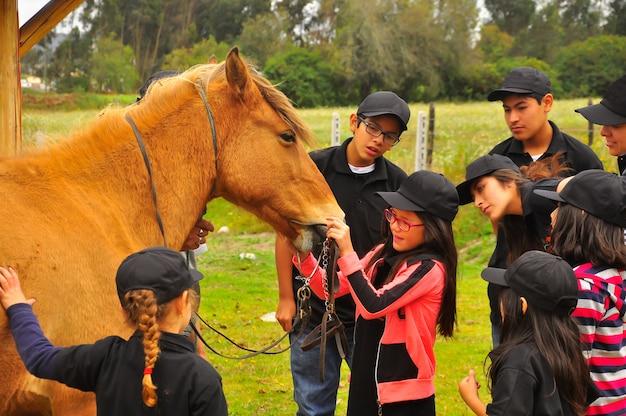 馬について学ぶ幼児と10代の若者。エクアドルの乗馬学校