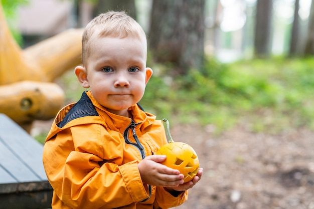 Young confused kid holding small carved pumpkin, copy space for cute halloween banner