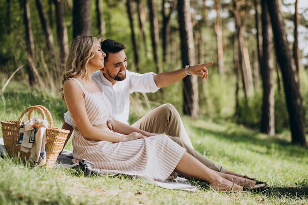 森の中のピクニックを持っている若いカップル