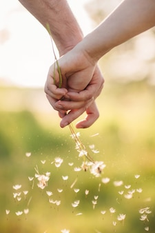 Young couple holding hands each other with bouquet of dandelions in summer park