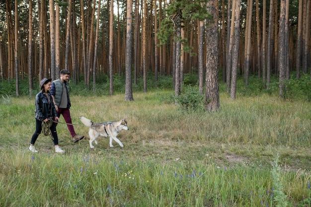 평상복을 입은 젊은 부부와 숲을 산책하는 애완동물