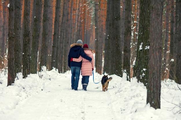 Молодая влюбленная пара с собакой гуляет в заснеженном лесу обратно к камере
