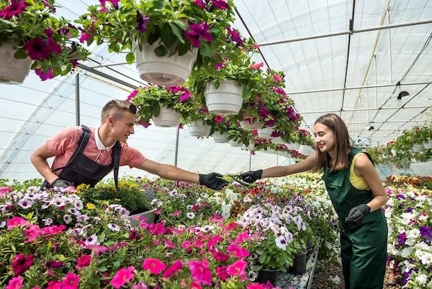 花の世話をする若いカップル