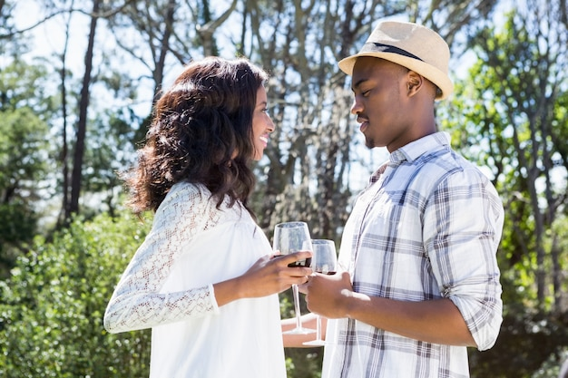 Young couple toasting glasses of wine