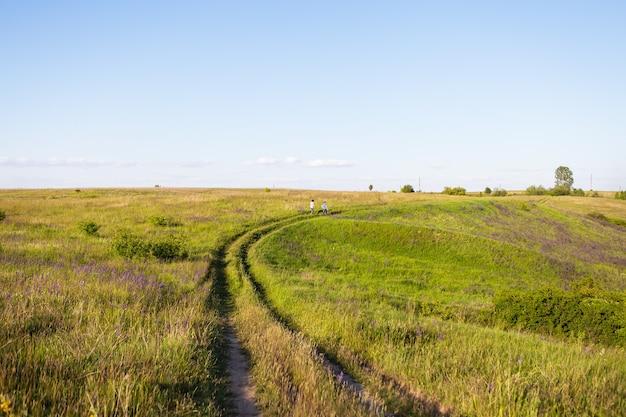 Молодая пара, прогулки на лугу, прогулки с собаками на открытом воздухе, красивое заходящее солнце.
