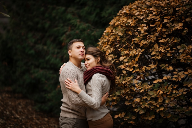 Young couple wearing on tied warm sweaters hugging in love at city in autumn background yellow bushes and trees.