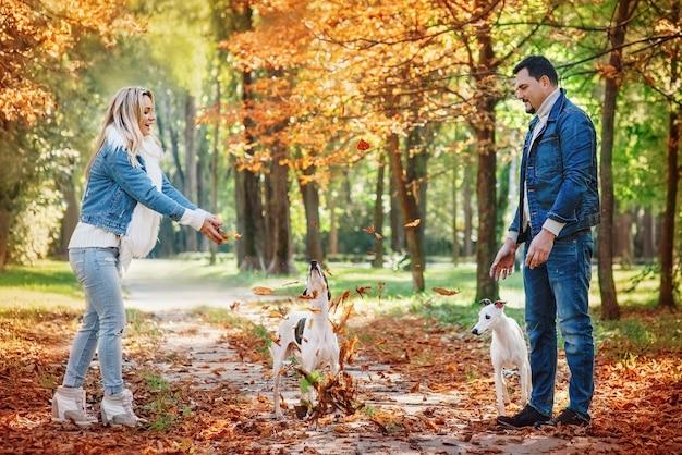 Молодая пара женщина и мужчина в джинсовой одежде гуляют с двумя гончими на улице осенью