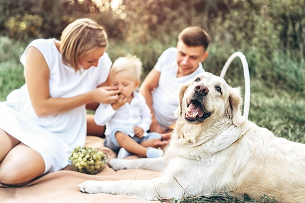 Young cute family on picnic with dog