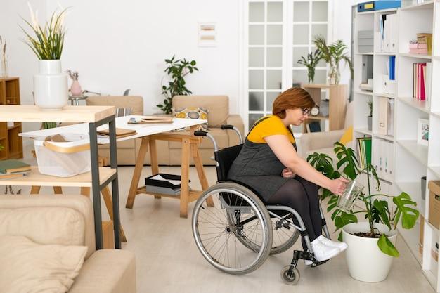 휠체어에 앉아 책장으로 바닥에 서있는 흰색 화분에 녹색 국내 식물에 물을주는 캐주얼웨어의 젊은 여성 비활성화